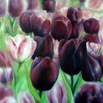 Tulipány - olej na plátně - 50 x 50 cm